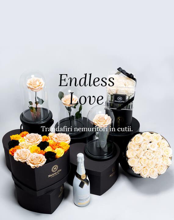 cele mai deosebite flori online